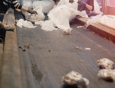 bandas transportadoras con residuos